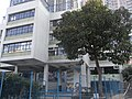 HK Mid-levels 香雪道 Hornsey Road 英基 ESF 己連拿小學 Glenealy School campus tree Feb-2011.JPG