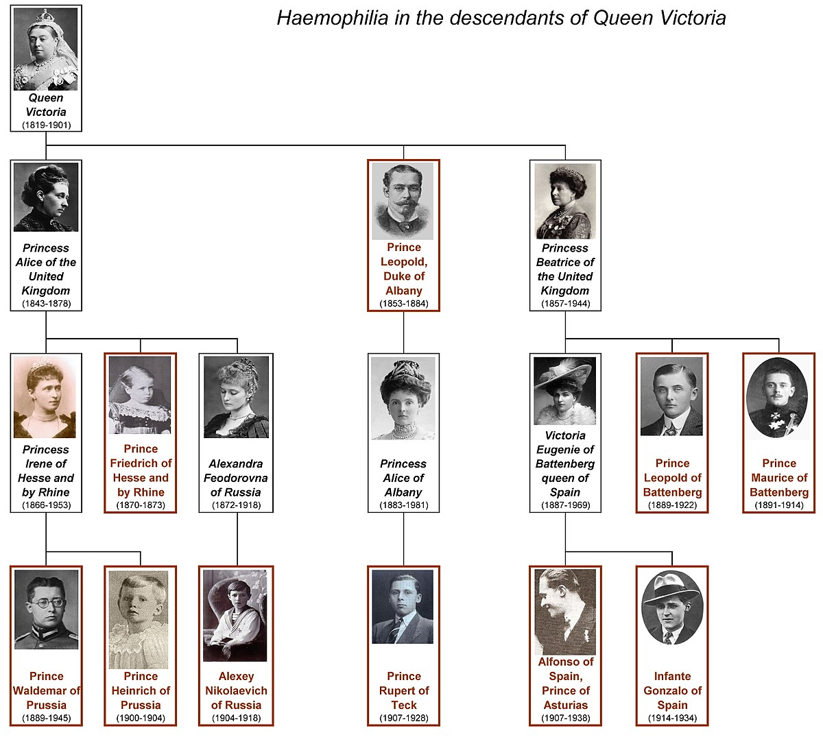 haemophilia in european royalty