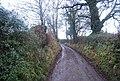 Halsway Lane - geograph.org.uk - 1657059.jpg