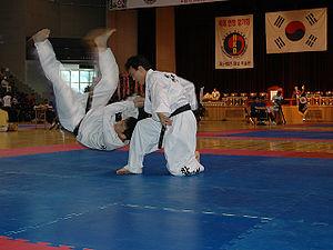 Hapkido4.jpg