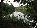 Hawkins Pond, Bucks Head, near Horsham, West Sussex. - geograph.org.uk - 27038.jpg