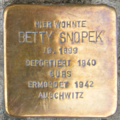 Heidelberg Betty Snopek.png