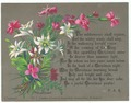Helga von Cramm, chromolithograph, No. 5, Dianthus silvestris, Gnaphalium leontopodium (Edelweiss), with F.R.Havergall prayer. C. Caswell.tiff
