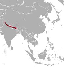 Hemitragus jemlahicus range map.png