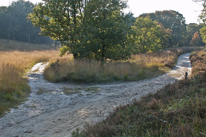 File:Herbst Elfenmeer 3.jpg