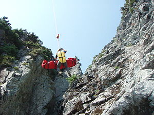 Helicopter Flight Rescue System - Image: Hfrstechoutoflions