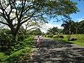 Hibiscus Drive, Pacific Harbour, Fiji - panoramio.jpg