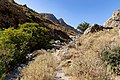 Hiking trail in Kourtaliotiko Gorge on the island of Crete, Greece.jpg