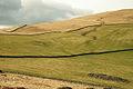 Hill grazing fields - geograph.org.uk - 712967.jpg