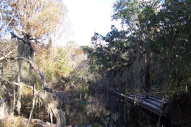 Hillsborough River State Park 4.jpg