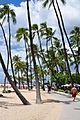 Hilton Hawaiian Village boardwalk Oahu Hawaii Photo D Ramey Logan.jpg