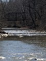 Hinkson Creek Geese under bridge.jpg