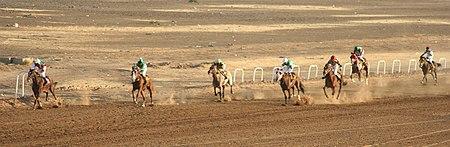 Horse racing in Khartoum 01.jpg