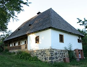 House from Vyshkovo (1879).jpg