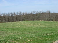 Household No. 1 Site, southern portion.jpg