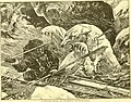 Hunting and trapping stories; a book for boys (1903) (14595917637).jpg