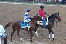 I'll Have Another and Lava Man at 2012 Preakness Stakes 2.jpg