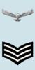 Sgt Arm de l'IAF.png
