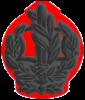 IDF RASAM Yabasha.png