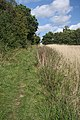 Icknield Way, near Dalham - geograph.org.uk - 949644.jpg