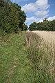 Icknield Way, near Dalham - geograph.org.uk - 949644.jpg