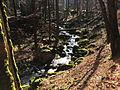 Ilse im Harz nahe Ilsenburg 2.JPG