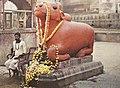 Indien, Varanasi Benares, Statue des Heiligen Stiers.jpg