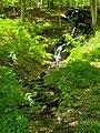 Innisfree Garden 2019-05-18 6.jpg