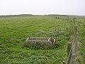 Interior of Eggardon hillfort - geograph.org.uk - 66983.jpg