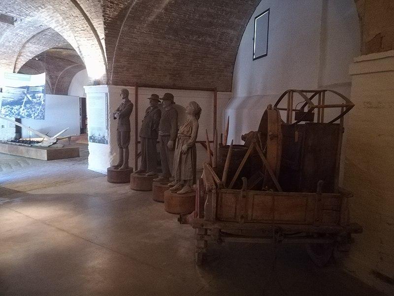 File:Introduzione MuseodellaMezzadriaSenese.jpg