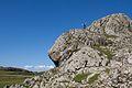 Iona stone outcrop (15064107849).jpg