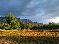 Isakhel Tehsil, Pakistan - panoramio.jpg