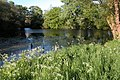 Island Pool, Earl's Croome - geograph.org.uk - 235368.jpg