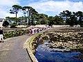 Isle de Berder - panoramio.jpg
