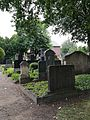 Jüdischer Friedhof Burgsteinfurt Rechtes Gräberfeld 1.jpg