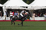 Jaeger-LeCoultre Polo Masters 2013 - 31082013 - Final match Poloyou vs Lynx Energy 38.jpg