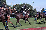Jaeger-LeCoultre Polo Masters 2013 - 31082013 - Match Legacy vs Jaeger-LeCoultre Veytay for the third place 13.jpg