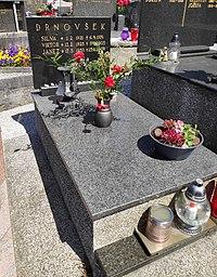 Janez Drnovšek family grave (Zagorje ob Savi cemetery).jpg