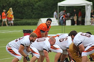 Jason Campbell - Campbell at Bengals training camp in 2014.