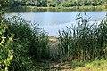 Jemgum - Deepen Daal - Badesee Soltborg 21 ies.jpg