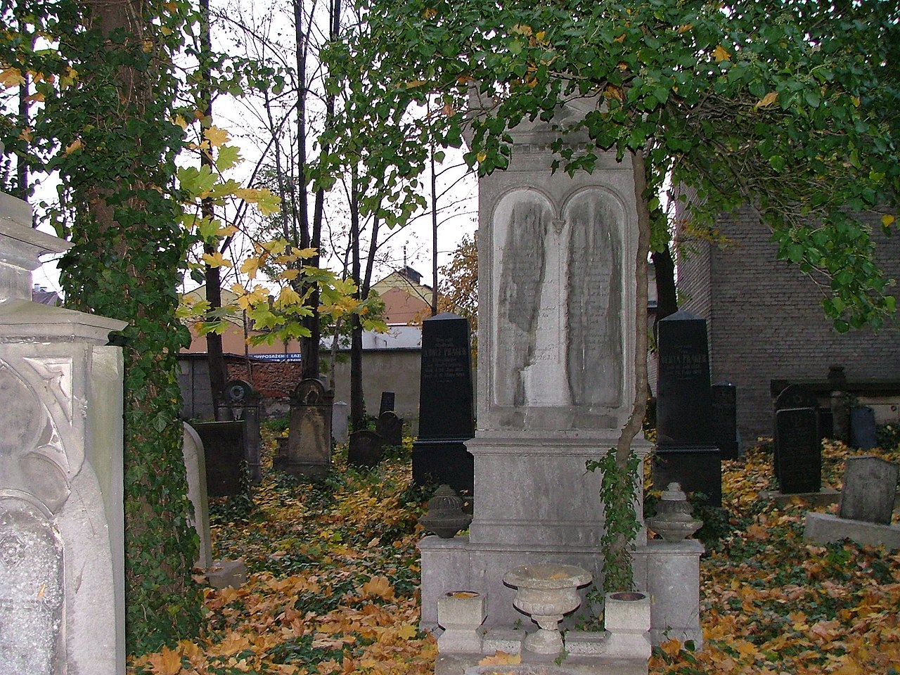 Jewish cemetery in Legnica (Poland)10.jpg