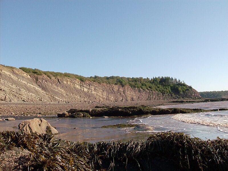 Joggins Fossil Cliffs, Joggins, Nova Scotia 01.jpg
