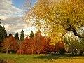 John A. Finch Arboretum - IMG 6938.JPG