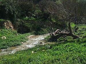 Geography of Jordan - The countryside near Salt.