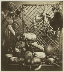 KITLV 26590 - Isidore van Kinsbergen - Fruit, game and poultry in Batavia - Around 1865.tif