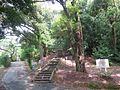Kabutoyama-Summer-1.jpg
