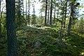 Kaltisbäcken - KMB - 16000300040567.jpg
