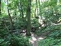 Kaniv Nature Reserve (May 2018) 97.jpg