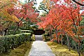 Katsura Rikyu (3263812077).jpg