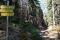 Keutschacher Panoramaweg auf den Plöschenberg (786 m) und den Rauschelesee, Kärnten.jpg